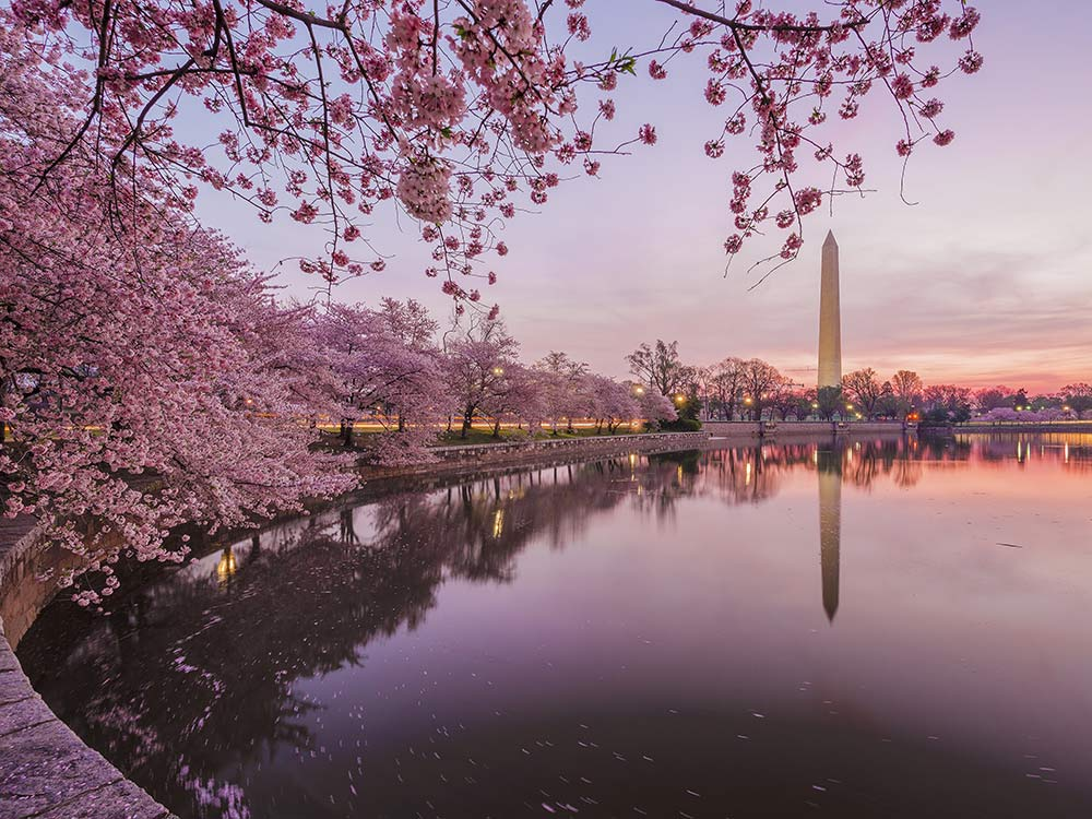 6 of America's Most Beautiful Places to Visit in the Spring - Scott Livengood