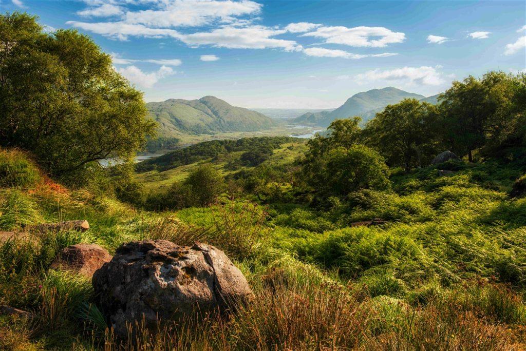 5 Reasons To Travel To Ireland All Year Round - Scott Livengood